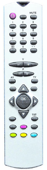 ABS Case TV Remote Control (RC1045)
