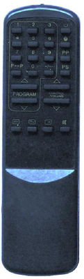 TV Remote Control with ABS Case (RC500)